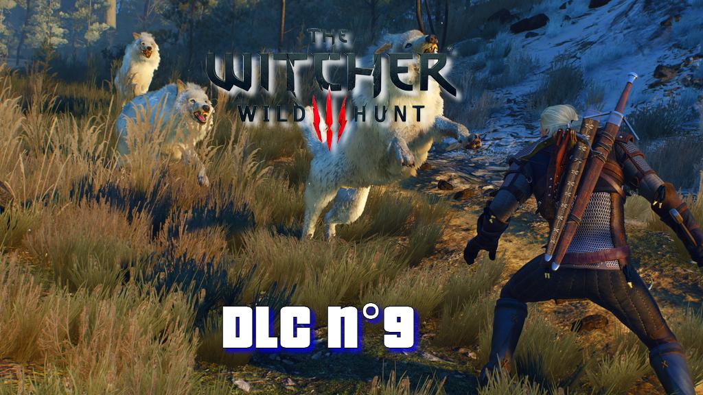 The Witcher 3 Wild Hunt: Le neuvième DLC